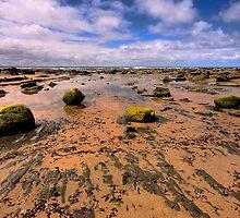 Rocky Beach. by trevorb