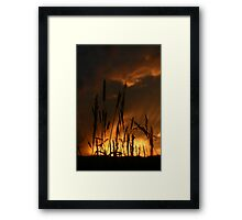 Sunset in the field. Framed Print