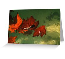 five red leaves Greeting Card