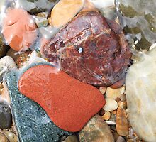 Colorful beach rocks  by Brian Downs