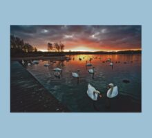 Swan Lake at Sunset Kids Clothes