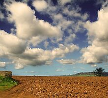 Fluffy Wuffy Clouds by Nigel Finn