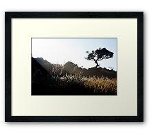 Sunrise, Horton Plains Framed Print