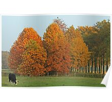 Lovely Autum Day Poster