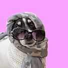 Fun Jack Russell Terrier Dog Headscarf Shades and Beads by Natalie Kinnear