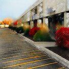 Urban Mall by jpryce