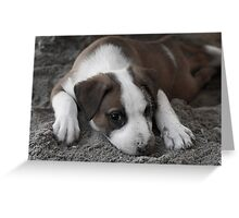 Modelling in the Sand Greeting Card