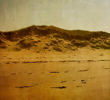 dunes by olivepix
