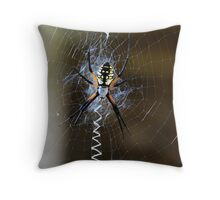 Spooky Spider Throw Pillow