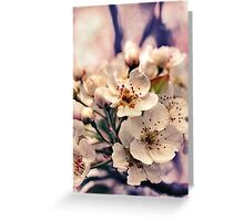 Blossoms at Dusk  Greeting Card