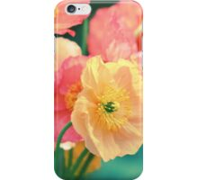 All the Colors of Sunshine iPhone Case/Skin