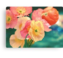 All the Colors of Sunshine Canvas Print