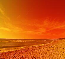 Orange Sky Meets the Sea by florene welebny