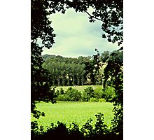 View through the trees..... Photographic Print