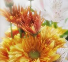 Gold Chrysanthemums and Alstroemeria 3 by Christopher Johnson
