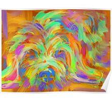 Dog Matze Poster