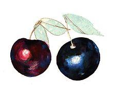 Berries by JenniferCortois