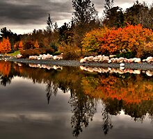 On Golden Pond by Larry Trupp
