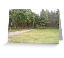Woodland Glade Greeting Card