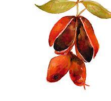 Fruity 7 by JenniferCortois