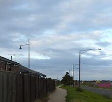 Cloudy Morning Walkway by Joan Wild