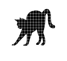 Black Cat Optical Illusion Effect Photographic Print