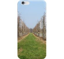 Vineyard Photography iPhone Case/Skin