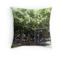 The Banyan Tree of Lahaina....... Throw Pillow