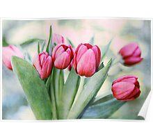 Twilight Tulips Poster