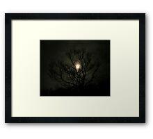 Dead Wood... Framed Print