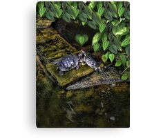DON'T MAKE ME COME OVER THERE AND LOVE U--CAUSE I WILL RIGHT NOW..LOVE TURTLES-PICTURE,PILLOW,CARD,TOTE BAG,ECT. Canvas Print
