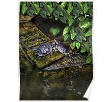 DON'T MAKE ME COME OVER THERE AND LOVE U--CAUSE I WILL RIGHT NOW..LOVE TURTLES-PICTURE,PILLOW,CARD,TOTE BAG,ECT. Poster