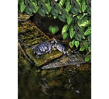 DON'T MAKE ME COME OVER THERE AND LOVE U--CAUSE I WILL RIGHT NOW..LOVE TURTLES-PICTURE,PILLOW,CARD,TOTE BAG,ECT. Photographic Print