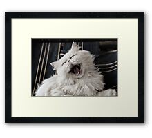 They say that NOTHING beats a good belly laugh!  Framed Print