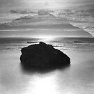 Dreaming Rock by Tatiana R