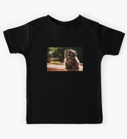 ...and whiskers on kittens... Kids Tee