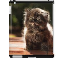 ...and whiskers on kittens... iPad Case/Skin