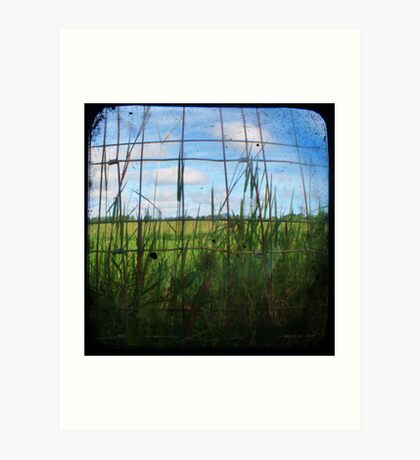 Through the Viewfinder and Fence Art Print