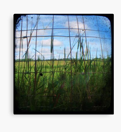 Through the Viewfinder and Fence Canvas Print