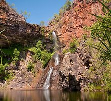 Tjaynera Falls (Sandy Creek), Litchfield National Park by Erik Schlogl