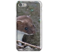 Stoat in the Hole iPhone Case/Skin
