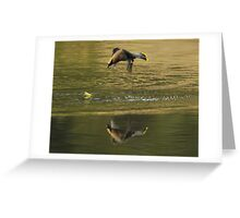 Waxwing Helicopter Greeting Card