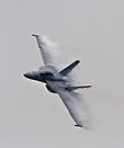 F18- Pt Magu Air Show by Michael  Moss