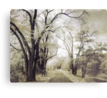 A Place For Dreams to Stay Forever Metal Print