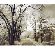 A Place For Dreams to Stay Forever Photographic Print