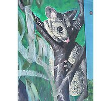 Possum Mural Photographic Print