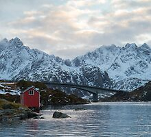 Lofoten winter by Dominika Aniola