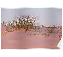 Currumbin Sand Dunes Sunset Poster