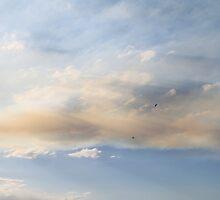 Smokin Skies by Jenelle  Irvine
