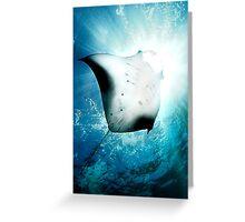 Sun Diver - Manta Greeting Card